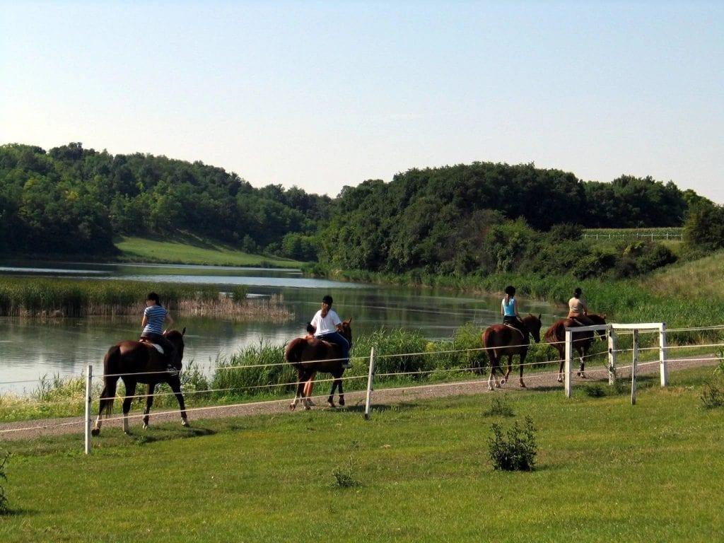 Szálláshelyek, ahol lehet lovagolni