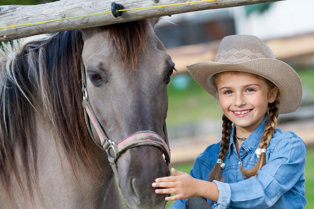 Családbarát lovardák Budapest közelében - Népszigeti lovarda
