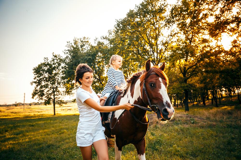 Családbarát lovardák Budapest közelében - Halápi Ranch
