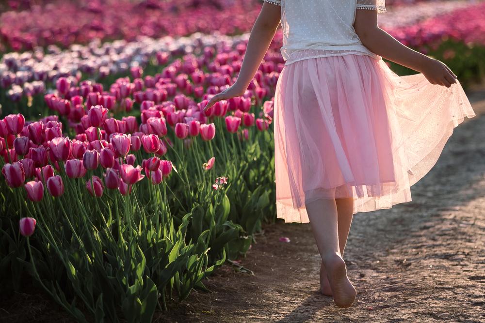 szedd-magad-tulipanszuret-koroshegyen