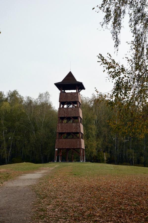 Kis-Balaton
