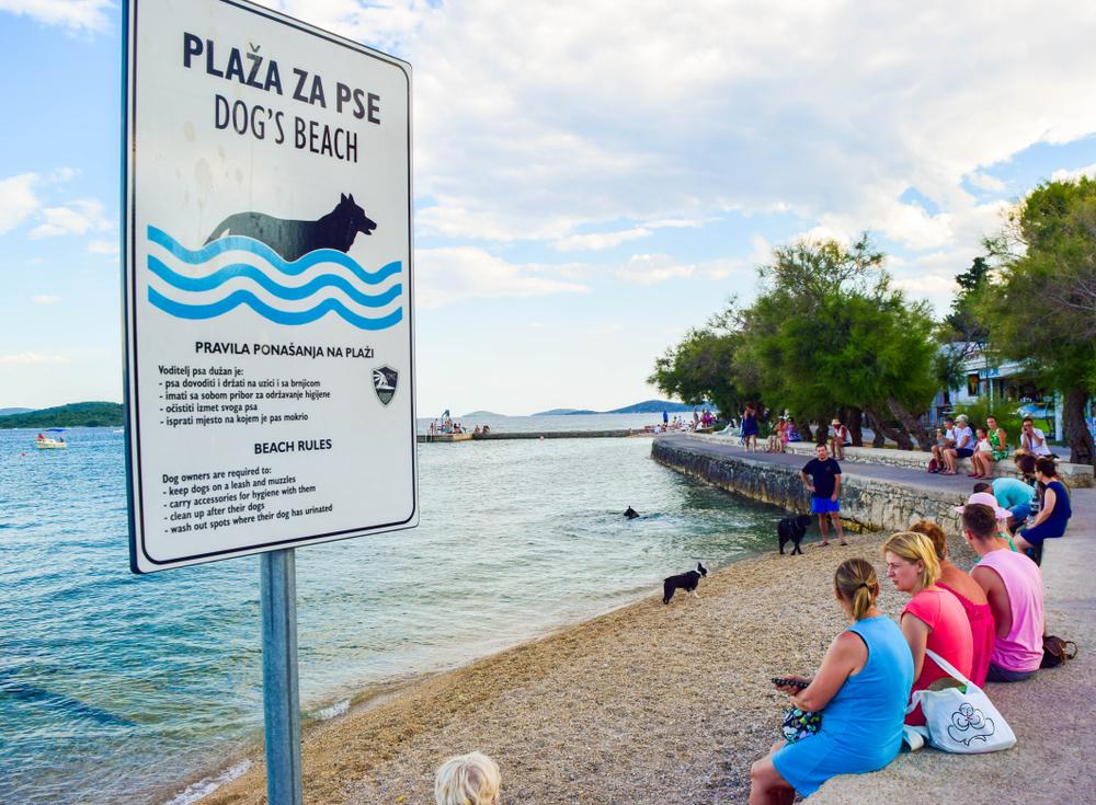Állatbarát apartmanok és kutyabarát strandok Horvátországban