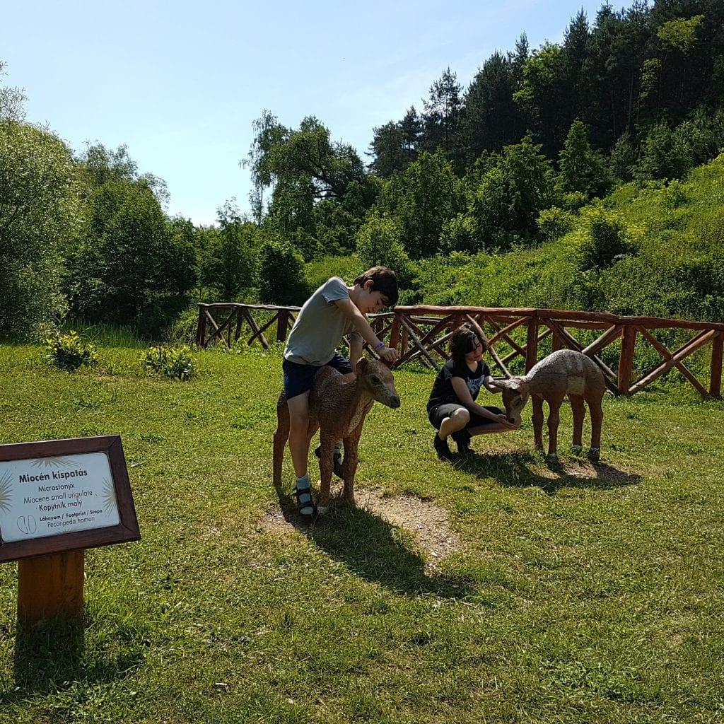 Ezek Magyarország legizgalmasabb lombkorona-tanösvényei