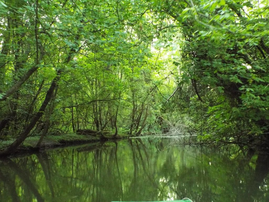 tisza-tó tanösvények túrák kalandparkok Magyarországon