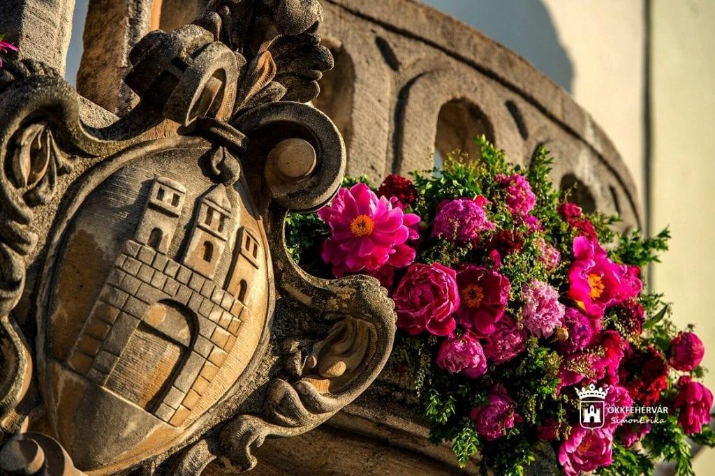 Pünkösdi virágálom Székesfehérváron