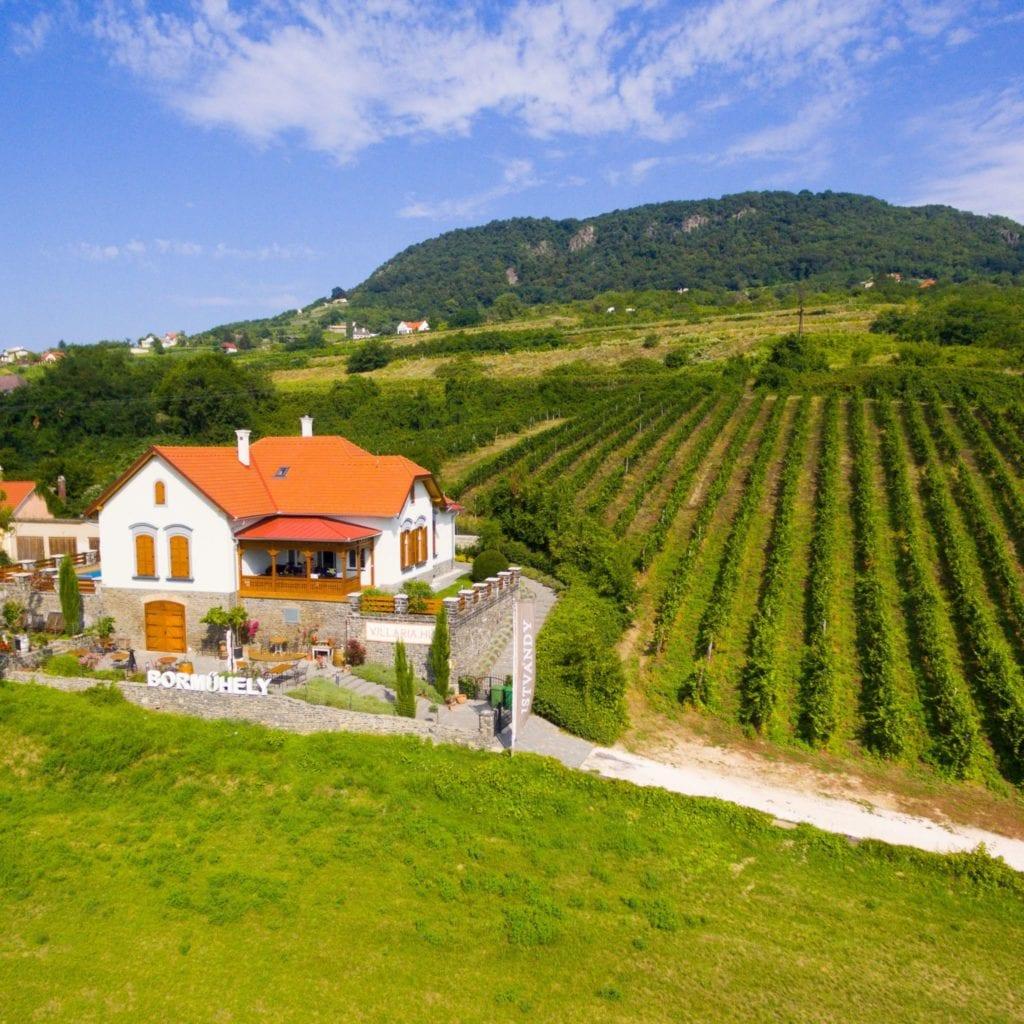 Különleges boros szálláshelyek
