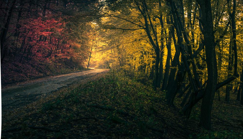 5+1 kihagyhatatlan őszi vértesi kirándulástipp