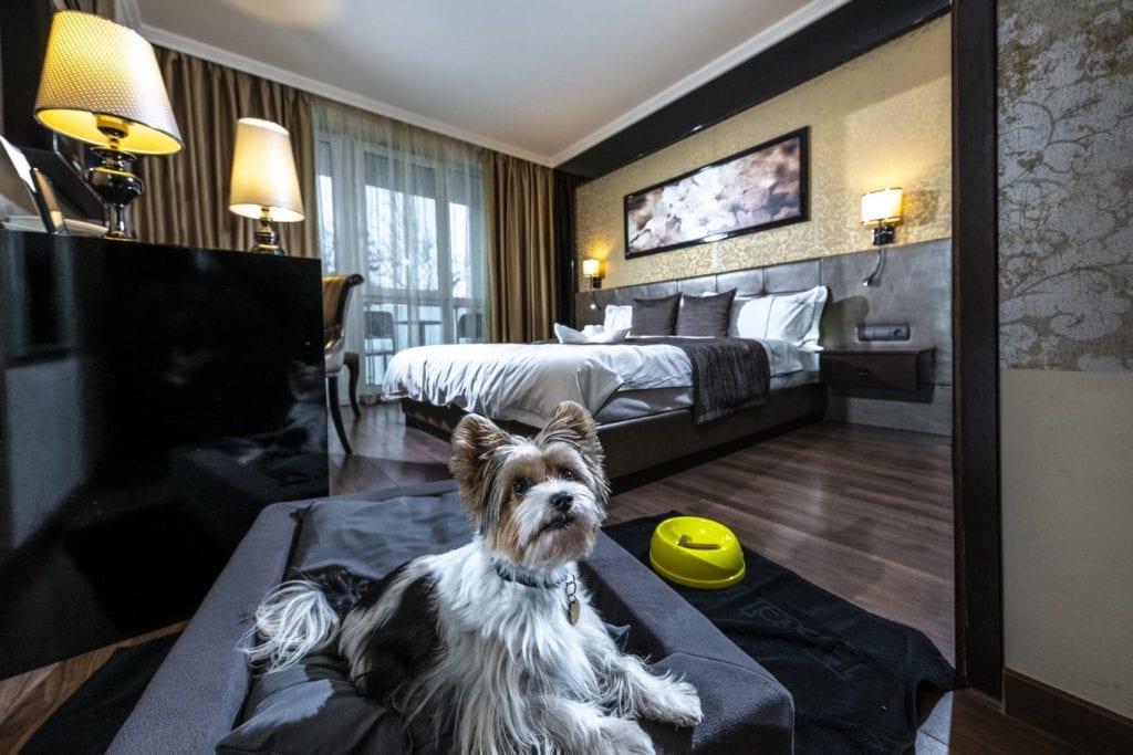 10 ok, amiért a hajdúszoboszlói Délibáb Hotelben töltsd a pihenésed