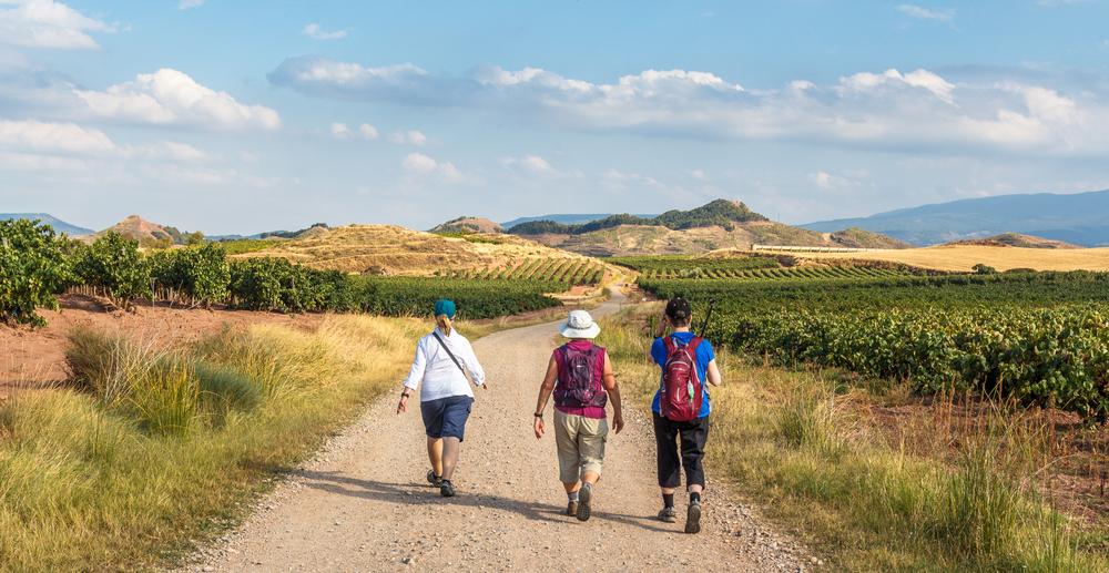 Balaton Camino - testi-lelki utazás a magyar tenger körül