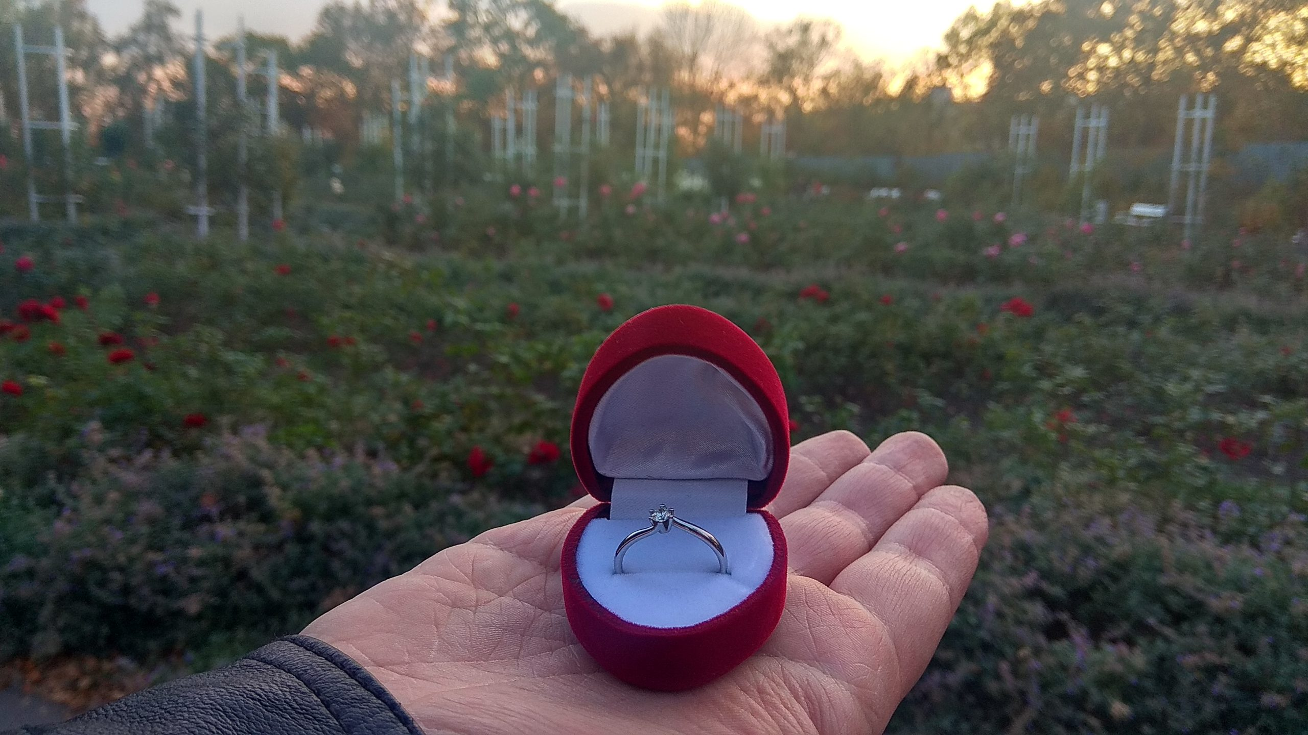 Kitti története: így kérték meg a kezét egy rózsaligetben egy prágai utazás során