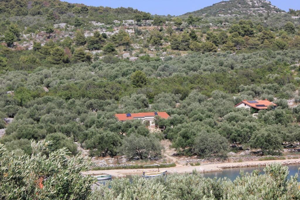 Robinzoni apartmanok az olajfák ölelésében Pasman szigetén