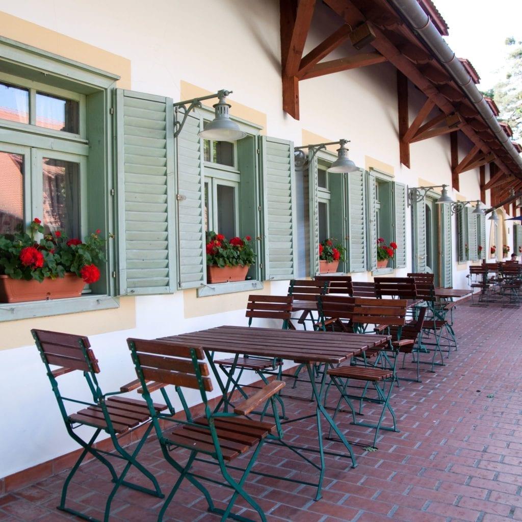 Abbázia Country Club – Fedezd fel az őrségi kutyabarát szálloda kincseit!