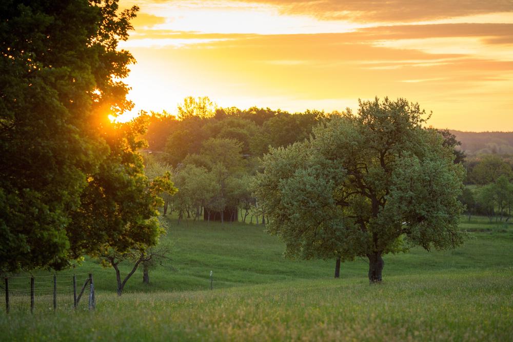 Az Őrség kincsei nyáron – fedezzétek fel a legjobb helyeket és programokat
