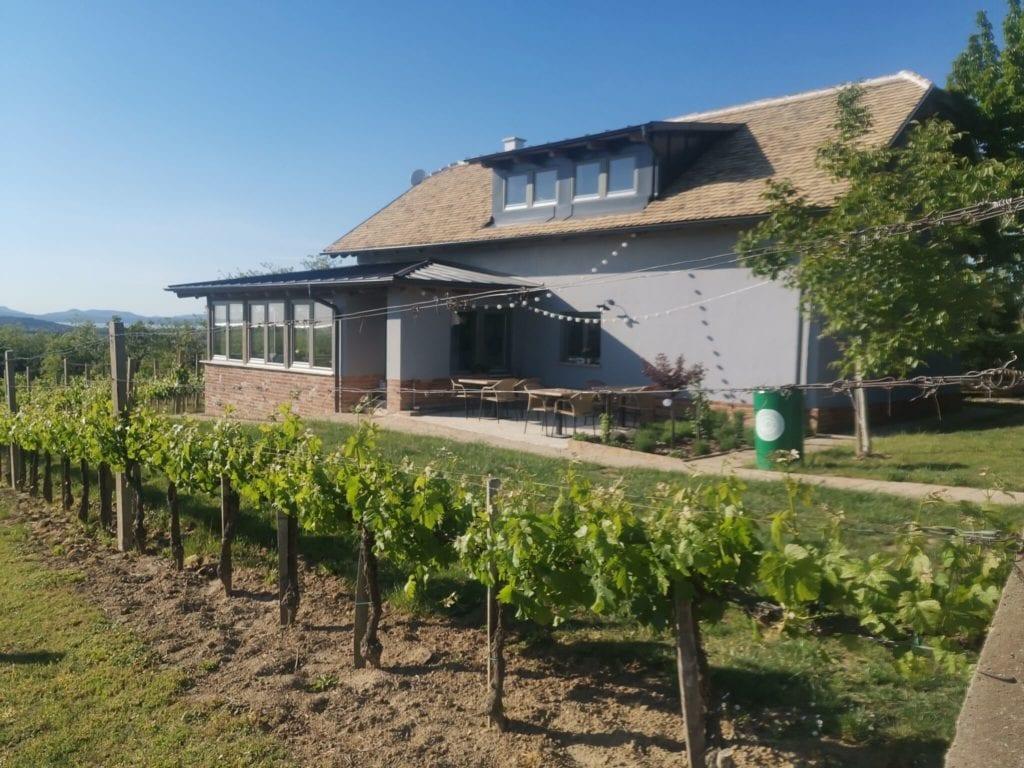 Zöld Ajtós Ház -  romantikus vendégház, ahonnan rálátsz a Badacsonyra