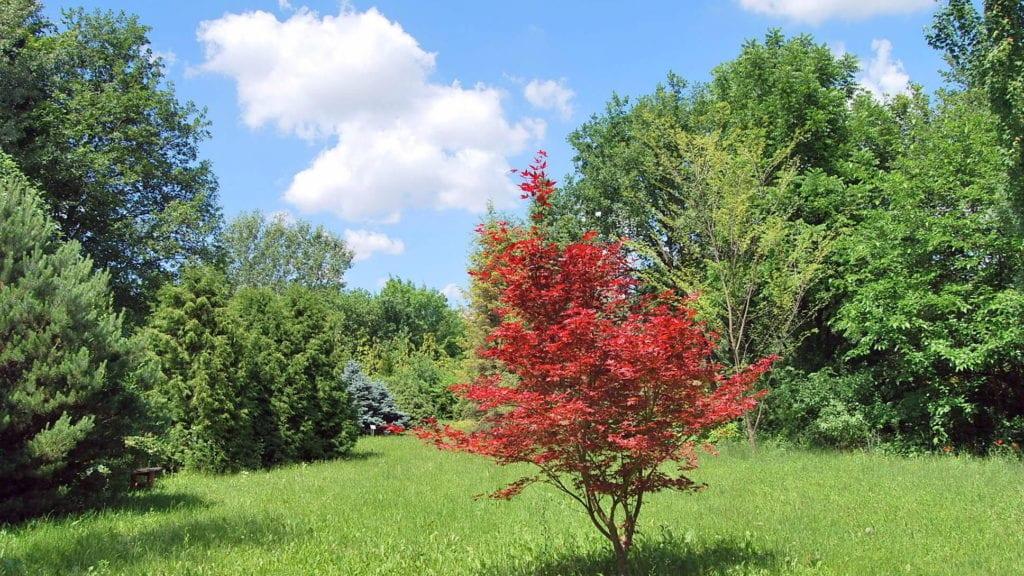 Szenzációs őszi kirándulóhelyet keresel? -  Városok, látnivalók, szállástippek ősszel