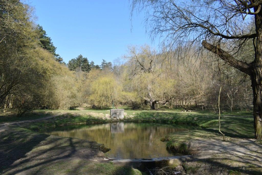 7 csodaszép völgy hazánkban, ahol vadregényes erdők várnak