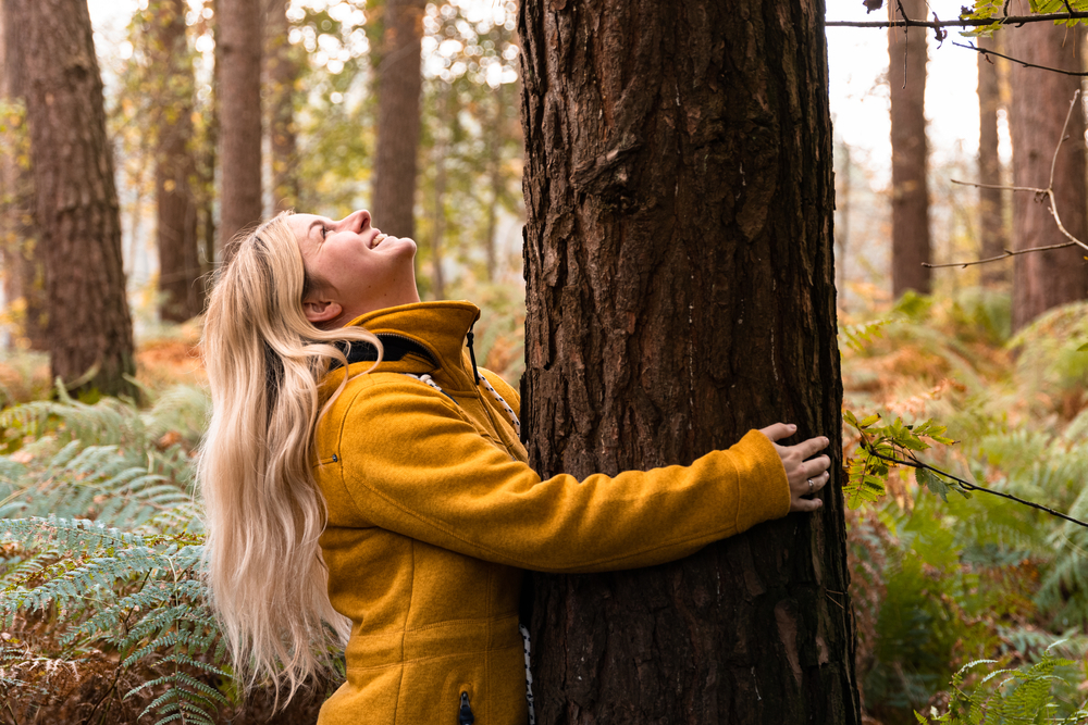 Fenyvesek, erdei kirándulások - Fedezzétek fel a legjobb erdei kalandokat! (térképpel)