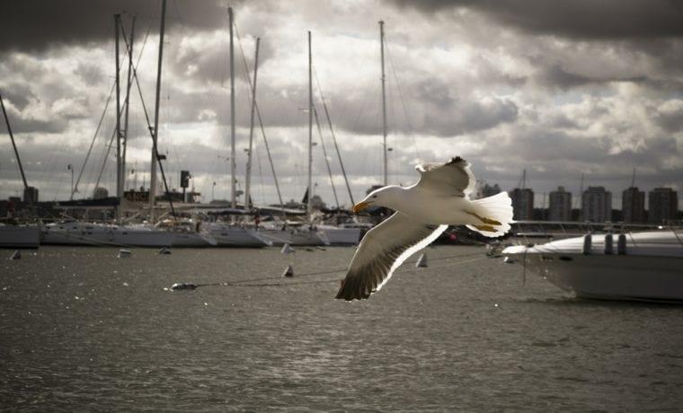 Téli kikötők, ahol érdemes kikötni pár napra