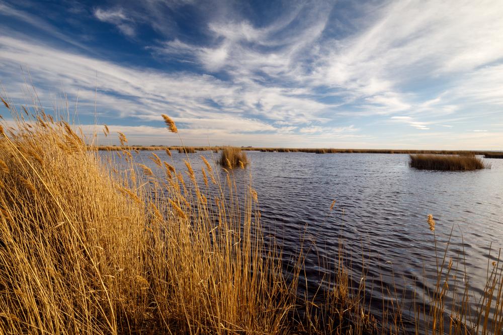 A Fertő tó legendája - Elsüllyedt falvak nyomában (+12 programtipp Sopronban)