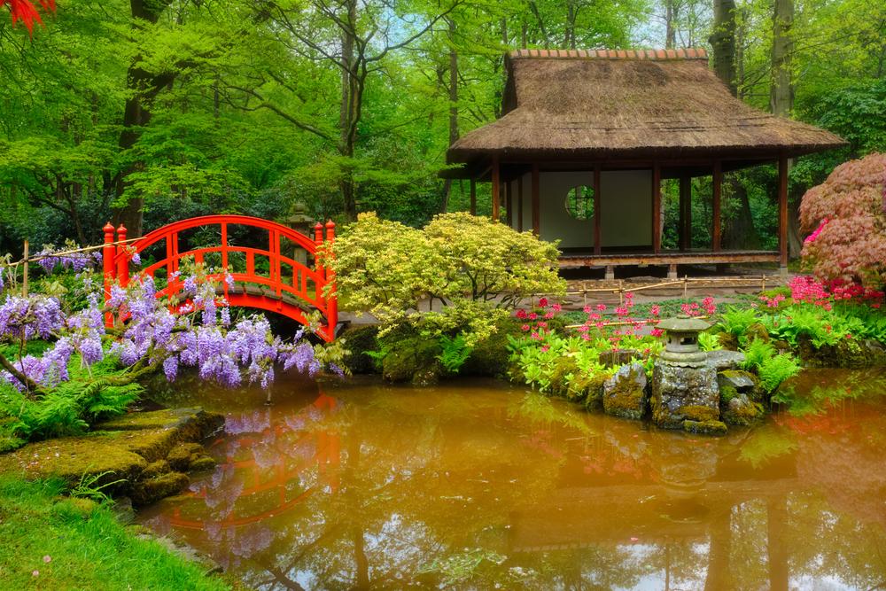 Lelki töltődés keleti hangulatban – Japánkertek és cseresznyefa-virágzás Magyarországon