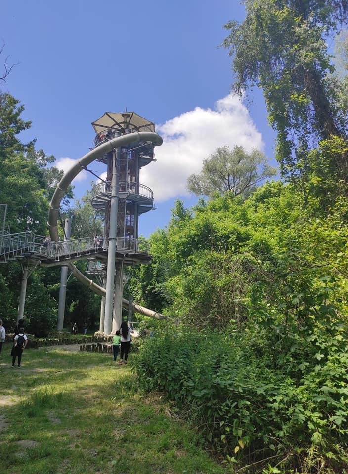 Családi nyári programtipp: kiruccanás az erdő felett