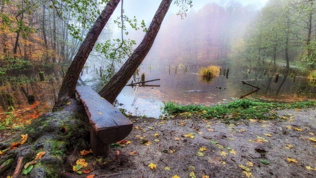 A misztikus hangulatú bakonyi Gyilkos tó - Mindent a szemnek, semmit a kéznek
