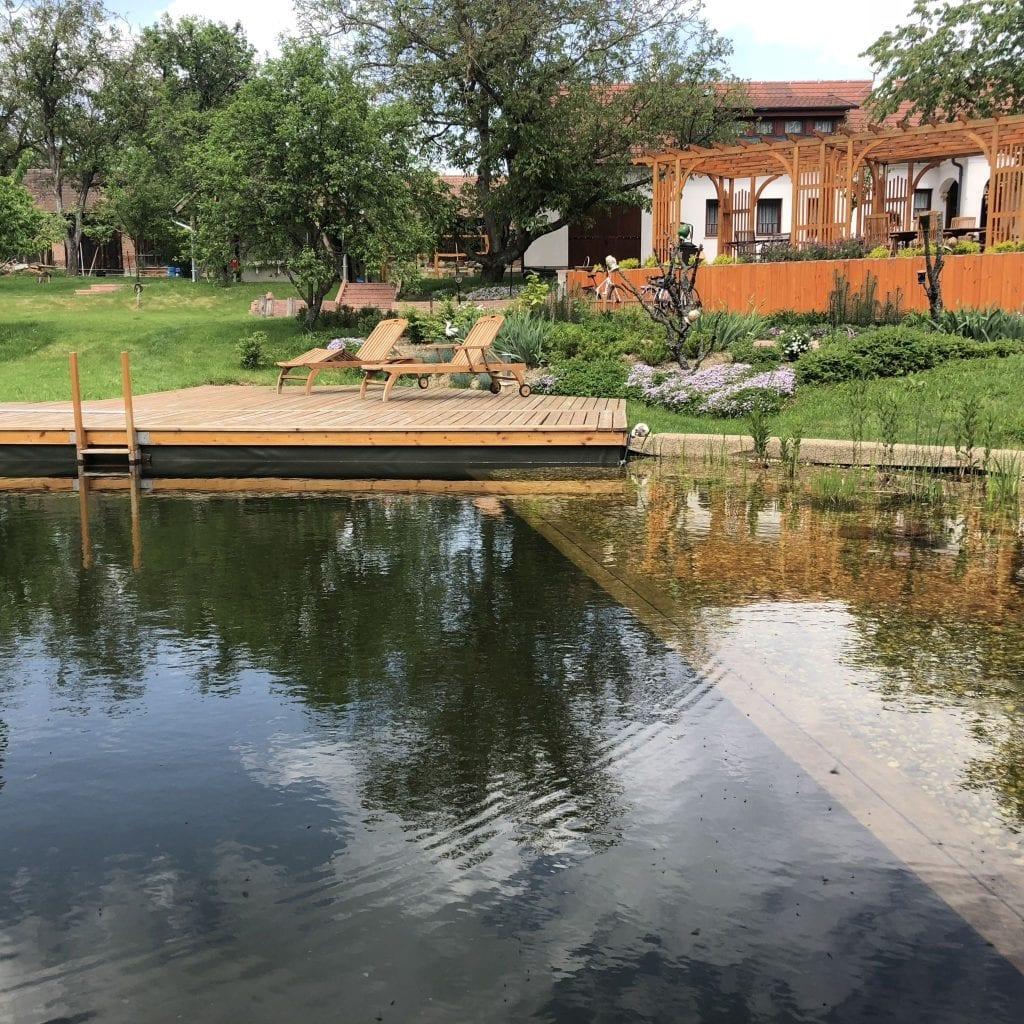Vadása-tó - Eldugott erdei tó az Őrségben
