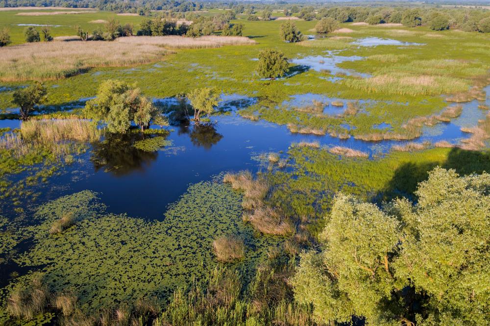 Európa Amazonasa, a Mura – Dráva - Duna UNESCO Bioszféra Rezervátum