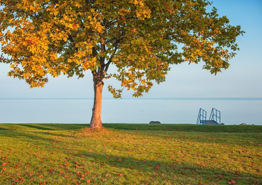 Vénasszonyok nyara a magyar tengeren – 12 ok, miért szuper hely a Balaton ősszel