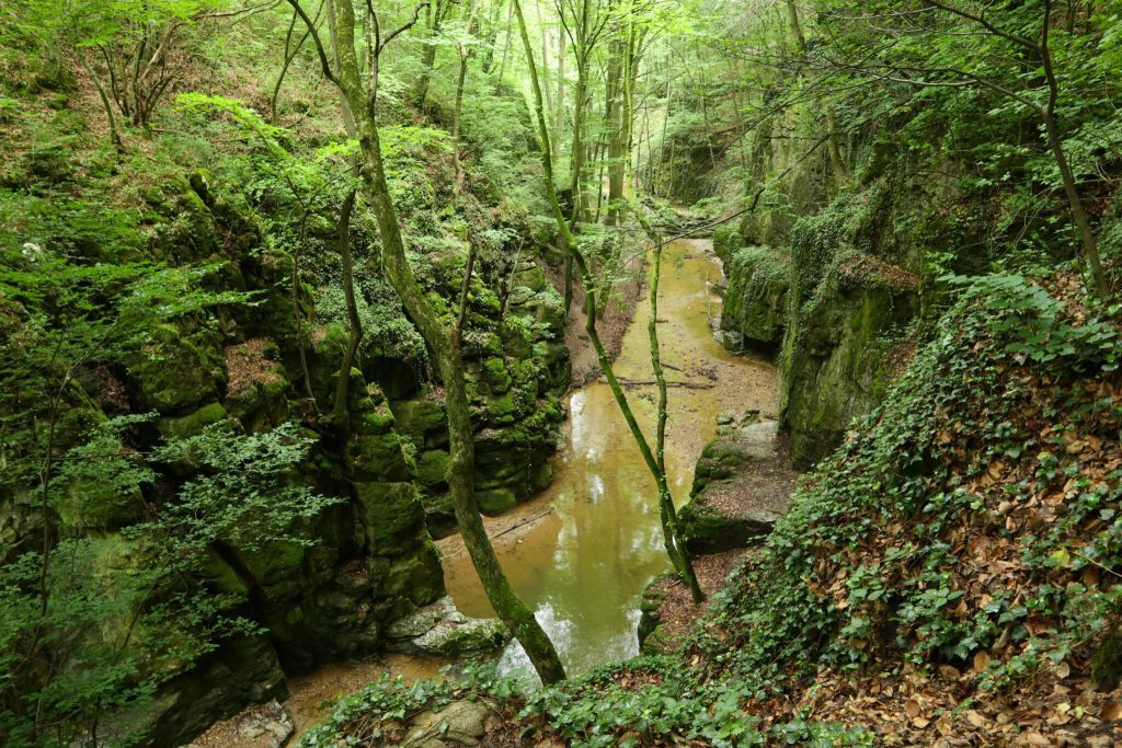 Kalandos túraélmény vár a vadregényes Gaja-szurdok völgyében